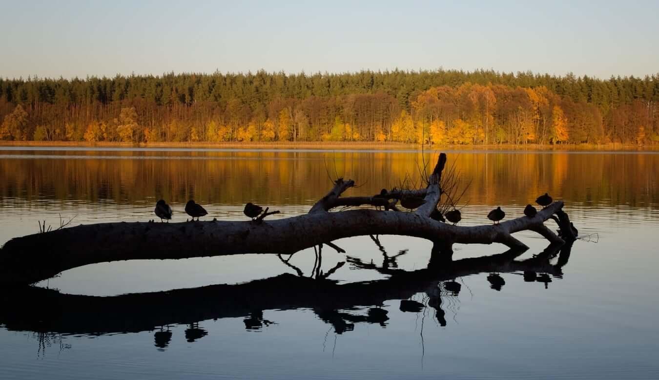 mieszkaj nad jeziorem olecko